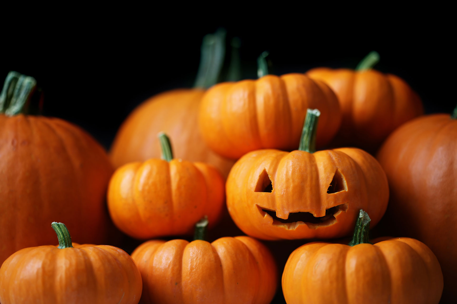 Halloween-shopping-frenzy---Five-days-of-awesome-offers-for-Rome-holidays